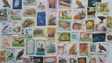50 Different Azerbaijan Stamp Collection