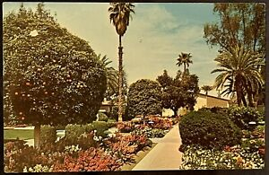 Chandler AZ  The San Marcos Resort and Country Club Motel Hotel Postcard