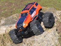 BSD Racing E-Monster Truck 4WD 2.4GHz Radio Remote Control Rock Crawler Orange