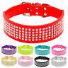 Collar para perros medianos grandes pitbull diamantes varios tamaños/colores