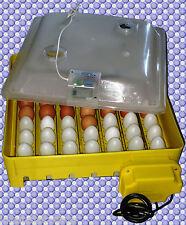 133) Inkubator/Brutkasten/Brutmaschine/Brutapparat/Incubator/Incubadora/Couveuse