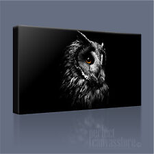 EAGLE OWL WONDERFUL BIRD OF PREY ICONIC CANVAS ART PRINT PICTURE Art Williams