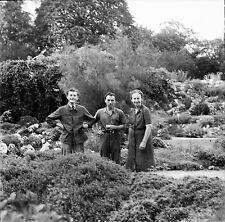PARIS c. 1949 -Gardiens Secteur Alpin Jardin des Plantes-Négatif 6 x 6 - N6 P124