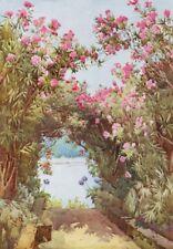 ITALY. Lake. Lago di Maggiore. Oleanders, Isola Madre 1905 old antique print