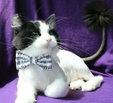 New Cat Sheet Music Bow Tie on White Shirt Collar Pet Bow Tie