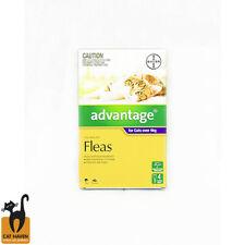 Advantage Flea Treatment