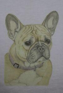 French Bulldog T-Shirt Or Sweatshirt  Original design sizes 3-6 mth - XXL