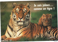 Fantasie - Cpsm - der Tiger (H5376)