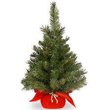 undecoratedunlighted tree - Best Christmas Tree Type