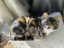 More details for winstanley tabby cat size 5
