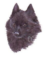 SCHIPPERKE.  3 Blank Dog greeting cards by Christine Groves