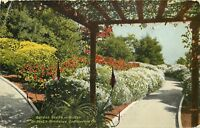 DB Postcard CA D581 Garden Scene Winter Dr Hoyts Residence So Pasadena 1910 Post
