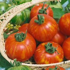 Tomato Tigerella 200 seeds - Vegetable