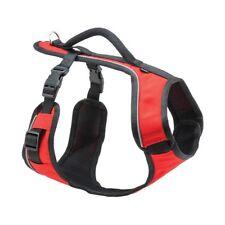 Harnais Easy Sport XS rouge