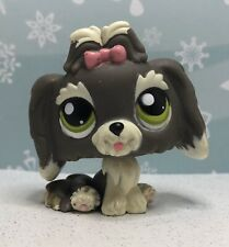 Littlest Pet Shop Authentic # 1523 Gray Cream Special Edition Lhasa Apso Dog