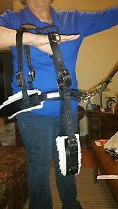 Goat Pulling Harness USA Made Heavy Duty Lined Carter Pet Supply 5 Colors