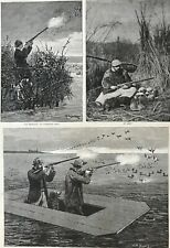 Canvas Back Duck Shooting On Chesapeake Bay. 1888. Large Engraving.