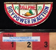 Vtg 1971 TALL PINES COUNCIL BOY SCOUT PATCH ~ BSA FLINT MI POWER IN ACTION 61Z4