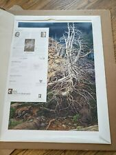 "Bev Doolittle's ""Prayer for the Wild Things"" original limited ed. signed print"