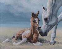 GREY MARE PINTO PAINT BAY FOAL saddlebred arabian horse art print SHIVAK expecta