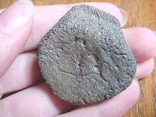 (F-309g) fossil Tortoise turtle leg spur specimen Florida rivers Pleistocene Age