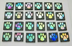 PAW PRINT SET OF 24 pcs ETCHED DICHROIC GLASS (ED19) CBS COE 90 FUSING SUPPLY