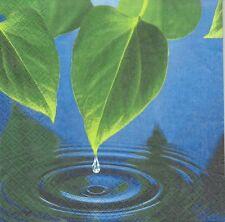 2 Serviettes en papier Feuille Nature Goutte d'eau Paper Napkins Leaves