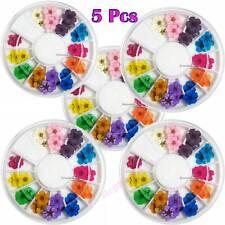 5Pcs 12 Color Real Dry Dried Flower 3D UV Gel Acrylic DIY Tips Nail Art Decor US