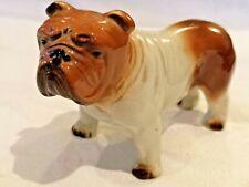 More details for british bulldog 5