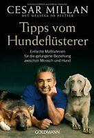 Tipps vom Hundeflüsterer: Einfache Maßnahmen für die gel...   Buch   Zustand gut