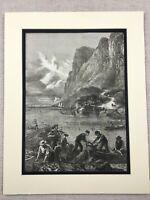 1875 Stampa Alosa Pesca Hudson Fiume New York Americana Antico Originale