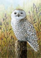 ACEO art print Bird 65 Owl from original painting by L.Dumas