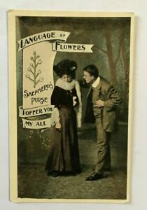 POSTCARD , LANGUAGE OF FLOWERS,I OFFER YOU MY ALL,SHEPHERDS PURSE, CC88