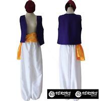 Aladino Vestito Carnevale Costume Uomo Man Simil Aladdin Cosplay Costume ALAD001