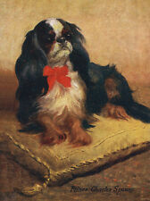 CAVALIER KING CHARLES TOY SPANIEL DOG GREETINGS NOTE CARD LOVELY DOG ON CUSHION
