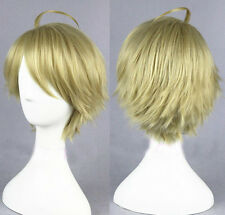 APH Axis Powers Hetalia America USA Alfred styled ash blonde Cosplay wig