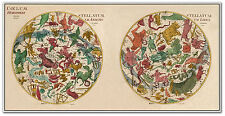 "LARGE World Astrological Star Chart Zodiac Hemisphere MAP circa 1801 24"" x 48"""