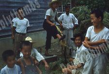 VTG 35mm Glass Slide 1953 South Korea War Chopping Grass for Fertilizer [C23]