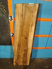 "#8496 ambrosia wormy maple Slab wood lumber 46 1/4""L 12 1/2""W 1 13/16""T"