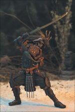 2001 McFarlane Toys Dark Ages Spawn Samurai Wars Jackal Assassin Action Figure