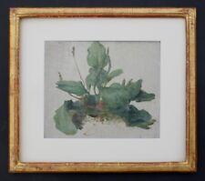 Pflanzenstudie, Jules Cyrille Cavé 1859