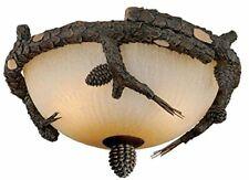 Vaxcel Fan Light Kit 14-1/2', Weathered Patina - LK51218WP