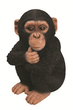 Vivid Arts - REAL LIFE ZOO ANIMALS - Baby Chimp Chimpanzee Sitting