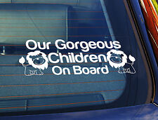 Static Cling Window Car Sign/Decal Our Gorgeous Children On Board Lions 5
