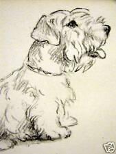 Lucy Dawson Sealyham Terrier 1946 Dog Art Print Matted
