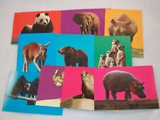 SAN DIEGO ZOO Stand-Up Card Subset   Trading Card Set  Animals