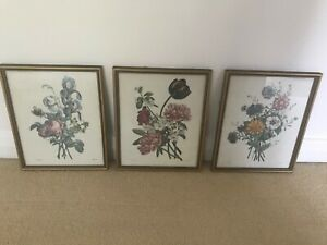 VINTAGE FLORAL BEAUTIFULLY FRAMED PRINTS X 3 BY J L PREVOST IN VGC