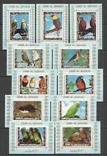 J1309 UMM ALQIWAIN FAUNA PARROTS COLOR BIRDS !!! 11BL MNH
