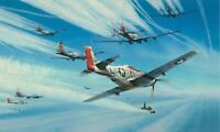 Jet Hunters by Robert Taylor - Signed by Mustang and Me262 Aces