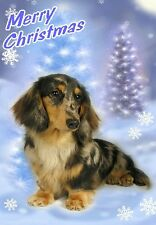 Dachshund Dog A6 Christmas Card Design XDA-21 by paws2print